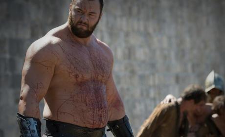 Hafpor Julius Bjornsson as Gregor Clegane