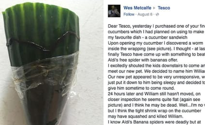 Dead Worm in Cucumber Leads to Epic Customer Care Exchange