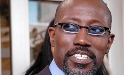 Wesley Snipes: Finally Headed to Jail