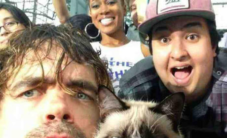 Peter Dinklage, Grumpy Cat Photo Forever Wins The Internet!!!