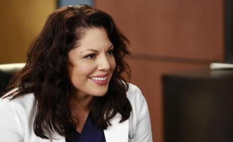 Grey's Anatomy Season 11 Episode 10 Recap: An Impossible Choice