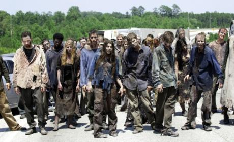 Man Kills Friend Before He Can Become Zombie, Blames Binge-Watching The Walking Dead