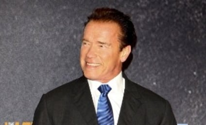 Arnold Schwarzenegger Naked Photo Worth How Much?