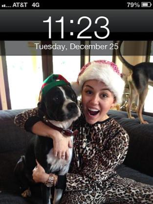 Miley Cyrus, Pet