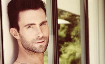Adam Levine Slams American Idol Treatment of Gay Contestants