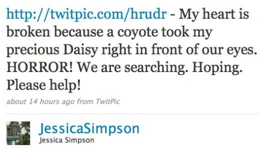 Jessica Twit