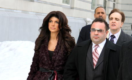 Teresa Giudice Seeks Overweight Nanny So That Joe Won't Cheat While She's in Prison, Source Claims
