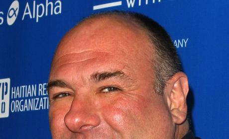 James Gandolfini Cause of Death: Natural Causes, Heart Attack Suspected