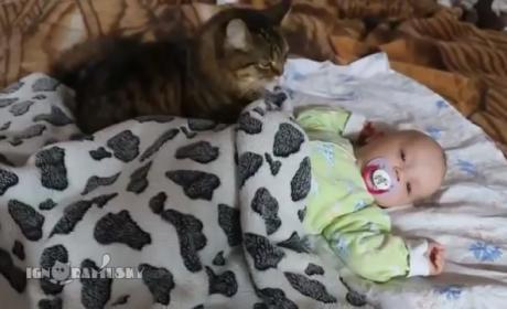 Cat Lulls Baby to Sleep: So AWWW-dorable!