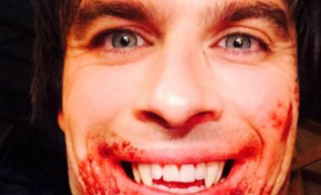 Ian Somerhalder Teases The Vampire Diaries Season 6