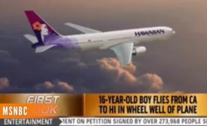 Teen Survives Flight Inside Wheel Well, Hops Down, Starts Wandering Around Airport