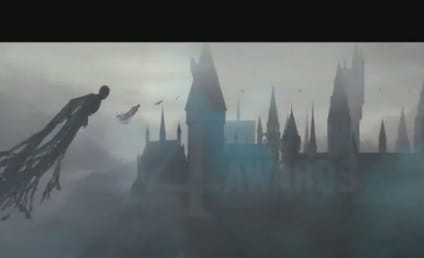 Will Harry Potter Earn an Oscar Nomination? Warner Brothers Lobbying Hard For Franchise