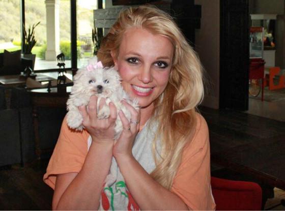 Britney Spears, Bitch