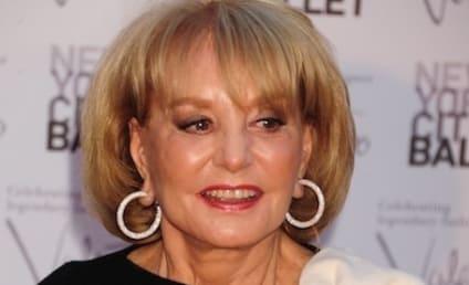 Barbara Walters Retirement: Coming in 2014?