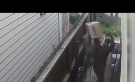 UPS Driver Throws Package Over Gate, Urinates on House in Viral Video