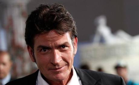 Brooke Mueller Denied Restraining Order Against Charlie Sheen