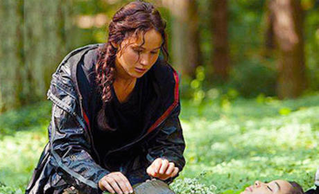 The Hunger Games: A Tribute to the Tributes