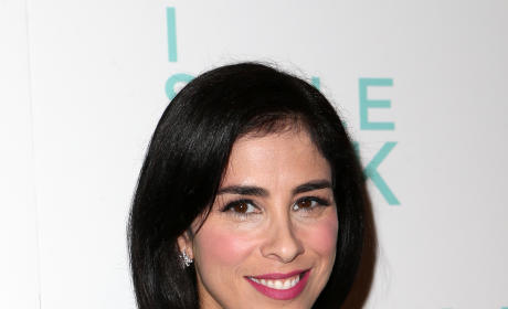 Sarah Silverman's Boobs: Still Huge, Possibly Fake