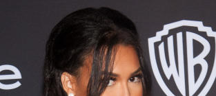 Naya Rivera Red Carpet Photo