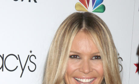 Did Elle Macpherson cross a line when she called Howard Stern