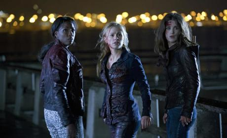What grade would you give the True Blood Season 6 premiere?