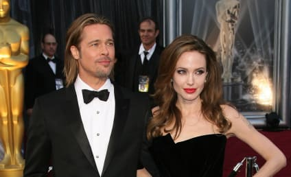 Brad Pitt Submits to Drug Test as Part of DCFS Investigation