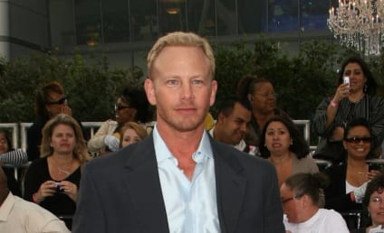Ian Ziering and Erin Ludwig: Married!