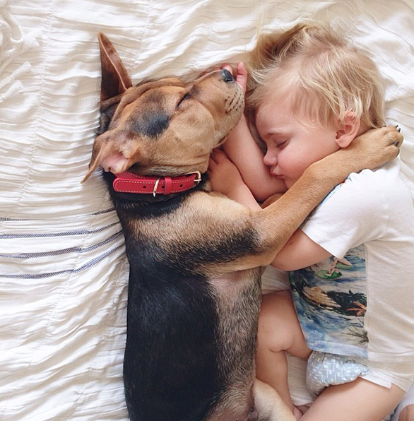 Dog Naps with Baby
