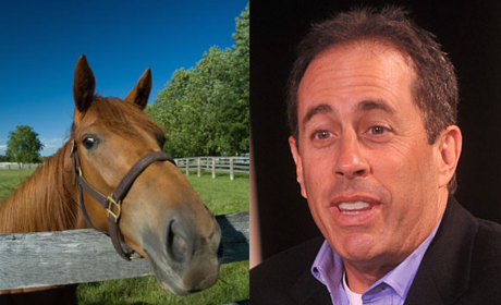 Kentucky Derby Day: 11 Celebrities Who Look a Lot Like Horses