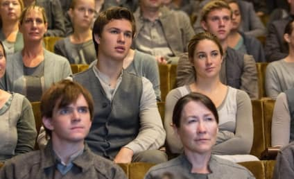 Divergent Photo Shows a Different Take On 50 Shades of Gray