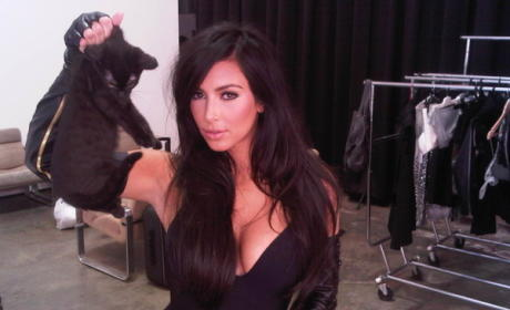 Kim Kardashian, Kleavage Klutch Kitty; PETA Pissed
