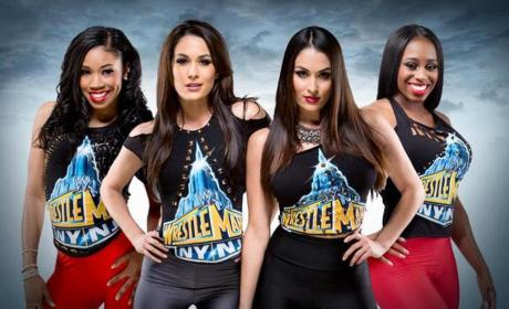 WWE Divas Reality Show: Coming Soon!