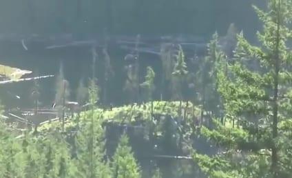 Bigfoot Sightings in Canada: Real or Fake?