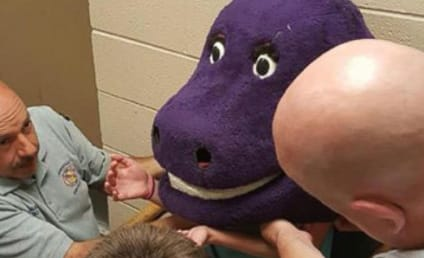 Girl Gets Stuck in Barney Costume, Lives All of Our Worst Nightmares