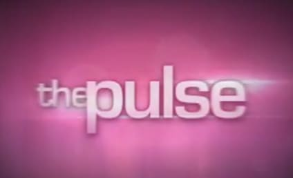 The Pulse: A Look at the Top 12 on American Idol