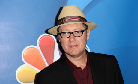 Is James Spader the right choice for The Avengers sequel?