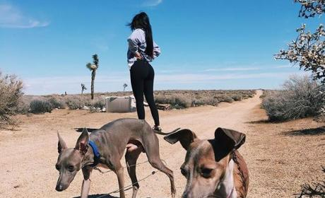 Kylie Jenner With Her Dogs