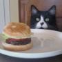 Kittykatpeep