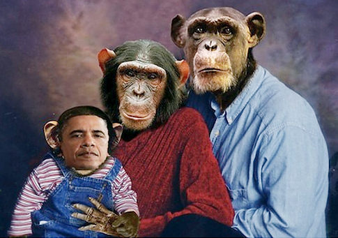 Obama Chimp Photo