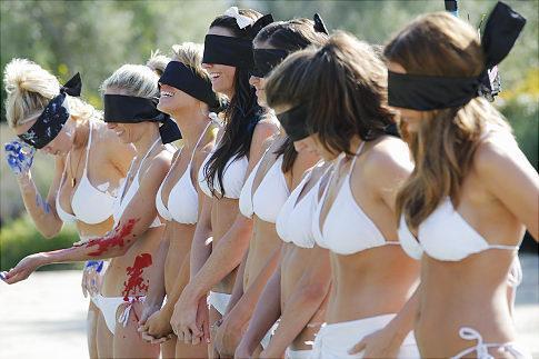 Bachelor Pad Bikini Babes