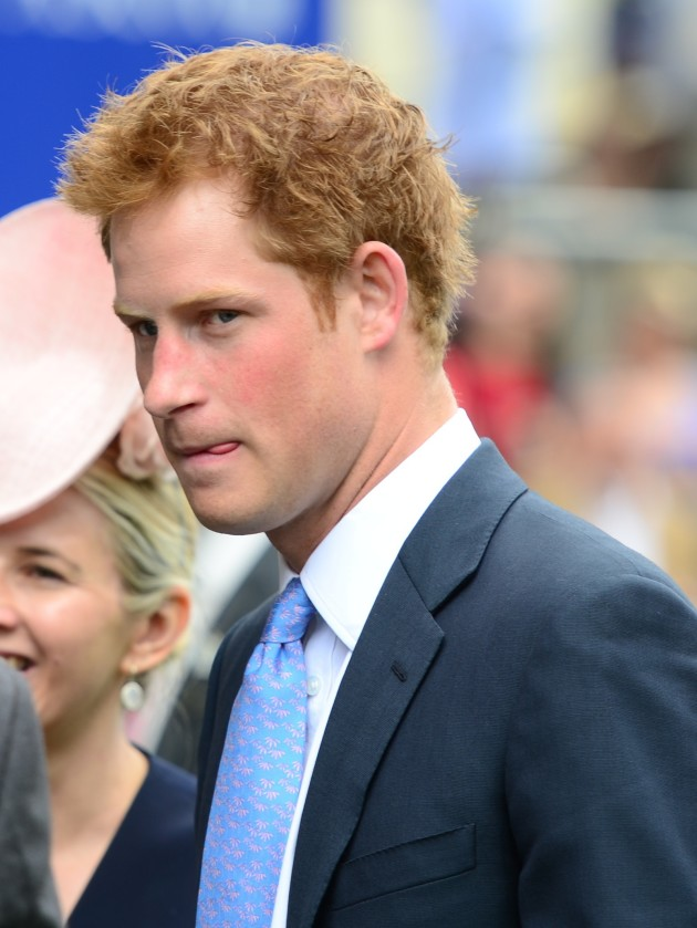 Prince Harry of Wales Picture