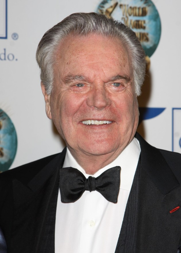 Robert Wagner Picture