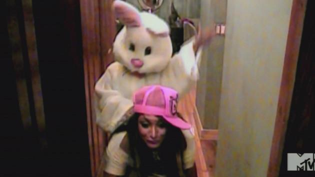 Bunny Sex