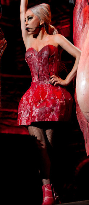Lady Gaga Meat Dress (NEW!)