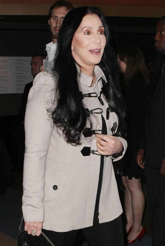 Cher Picture