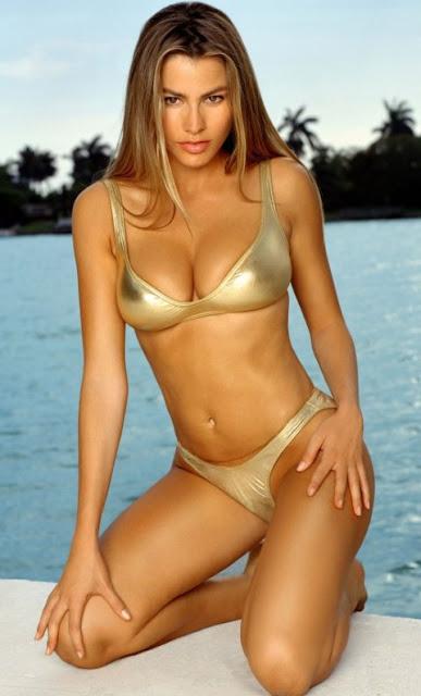 Sofia Vergara Bikini Picture