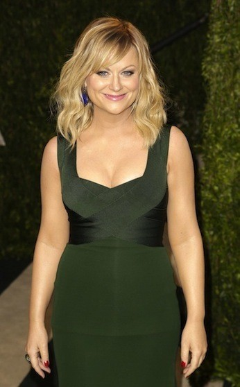 Amy Poehler Photograph