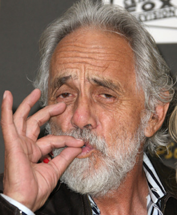 Tommy Chong Pic