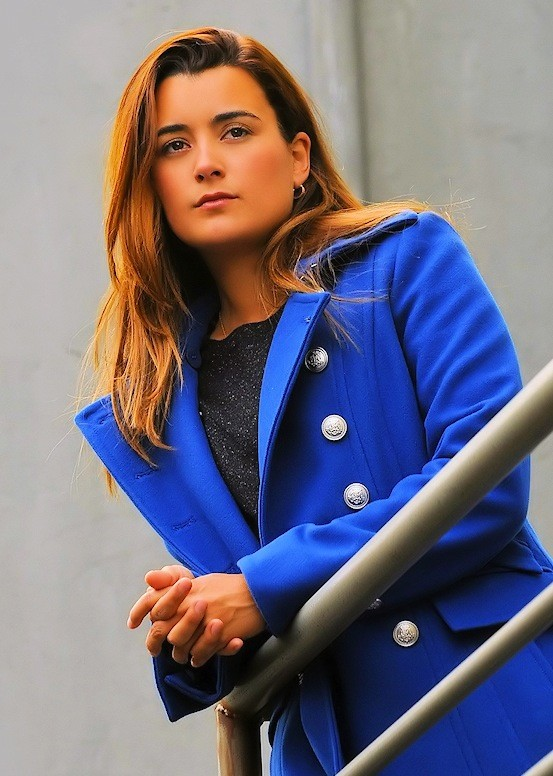 Cote de Pablo as Ziva David on NCIS. She is leaving the show after