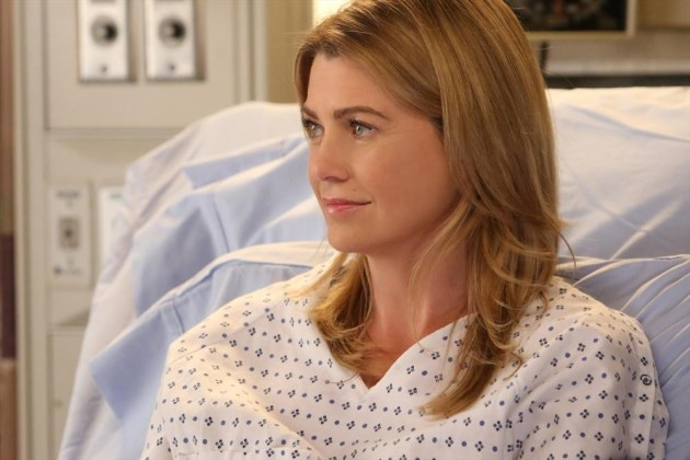 Ellen Pompeo as Meredith